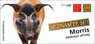 publicite-zoo-prague-morris.jpg